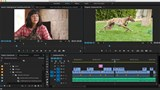 Image for Premiere Pro CC Essential Training (2015)
