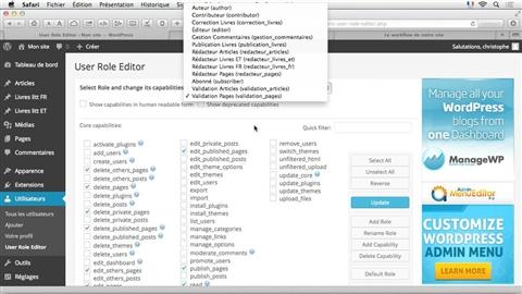 course illustration for WordPress : Mise en place d'un workflow