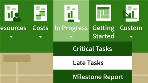 course illustration for Mastering Microsoft Project Graphical Reports