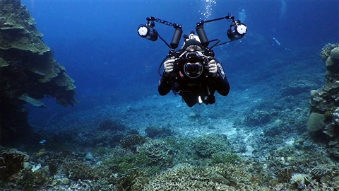 course illustration for Underwater Photography: Wide Angle