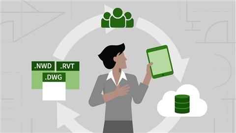 course illustration for BIM Manager: Managing BIM 360