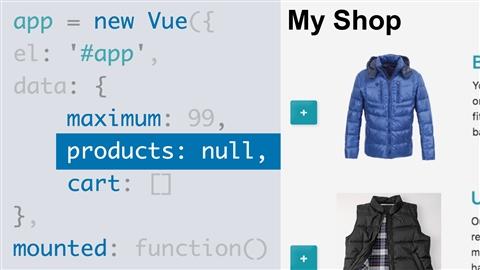 course illustration for Vue.js Essential Training