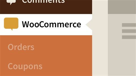 course illustration for WordPress Ecommerce: WooCommerce