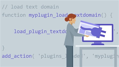 course illustration for WordPress: Plugin Development