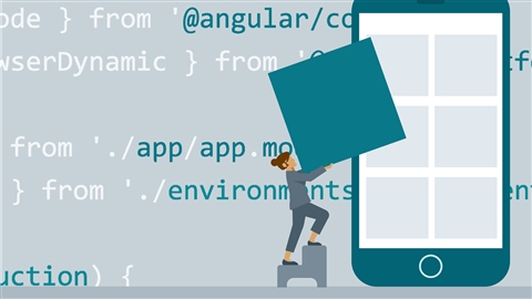 course illustration for Angular: Building Large Applications