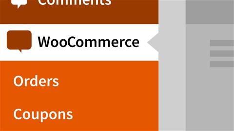 course illustration for WordPress Ecommerce: WooCommerce