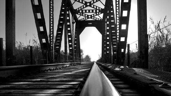 descarga Lynda.com - Foundations of Photography: Black and White