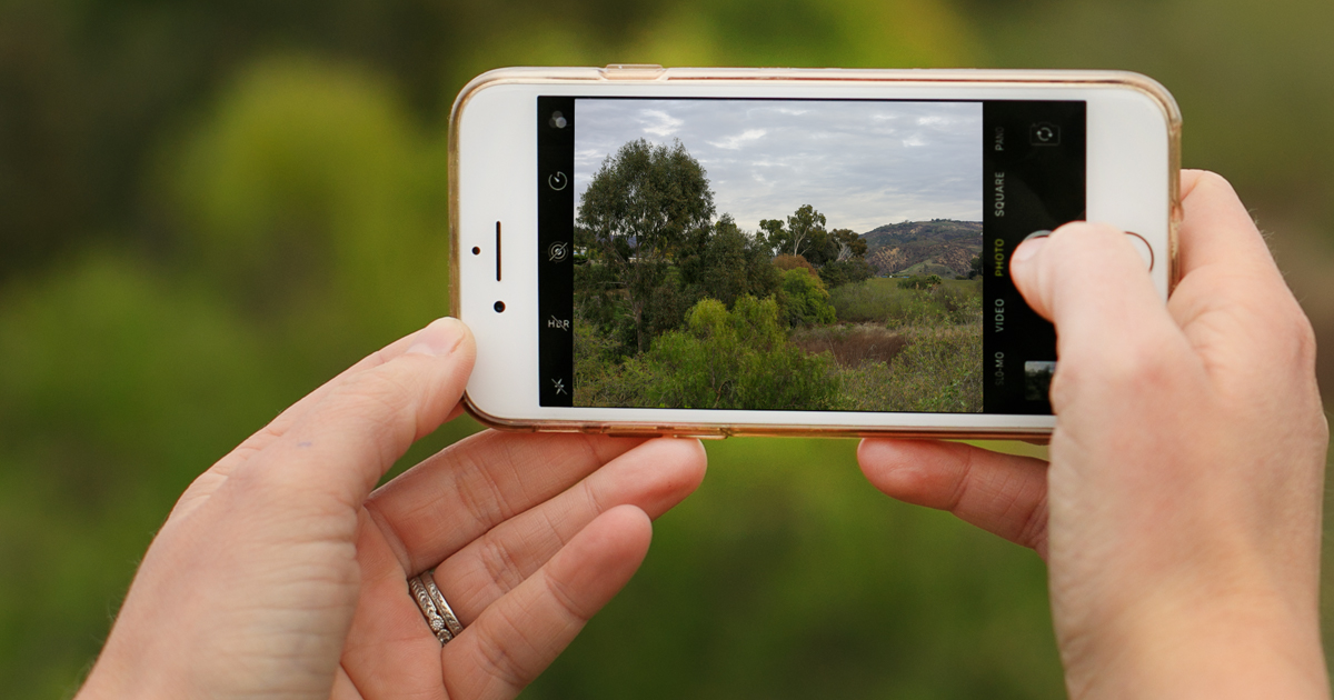 hero image for Learning Path: Improve Your Mobile Photography Skills