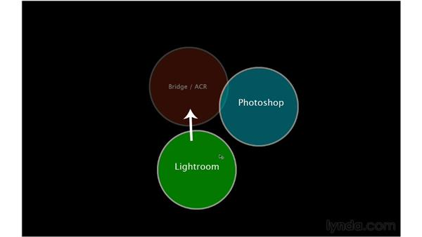 The photographic workflow puzzle: Lightroom 4 Essentials: 01 Organizing and Sharing with the Library Module