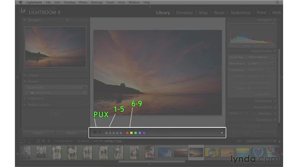 The Photoshop Lightroom interface: Lightroom 4 Essentials: 01 Organizing and Sharing with the Library Module