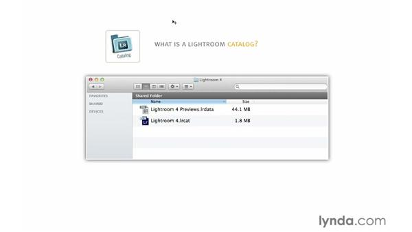 Introducing catalogs: Lightroom 4 Essentials: 01 Organizing and Sharing with the Library Module