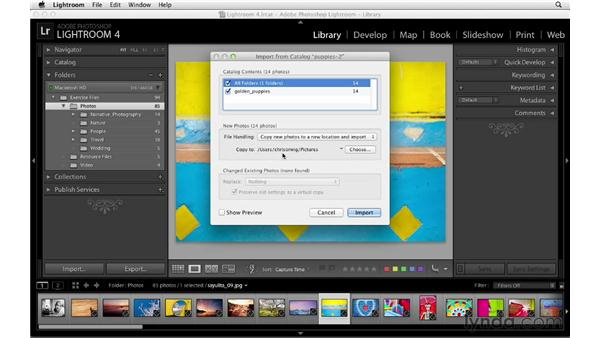 Importing and updating legacy catalogs: Lightroom 4 Essentials: 01 Organizing and Sharing with the Library Module