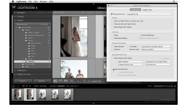 Customizing the Grid and Loupe views: Lightroom 4 Essentials: 01 Organizing and Sharing with the Library Module