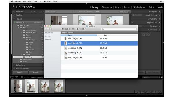 Deleting and removing images from folders: Lightroom 4 Essentials: 01 Organizing and Sharing with the Library Module