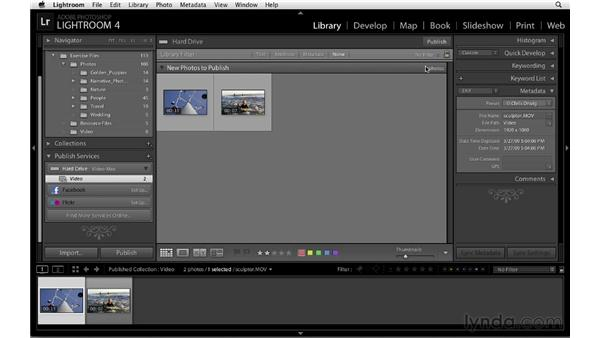 Publishing to a hard drive: Lightroom 4 Essentials: 01 Organizing and Sharing with the Library Module