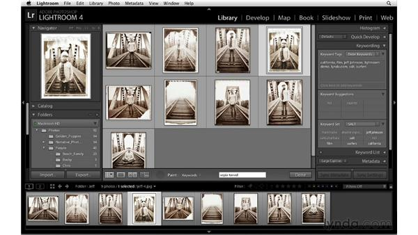 Keywording with the Painter tool: Lightroom 4 Essentials: 01 Organizing and Sharing with the Library Module