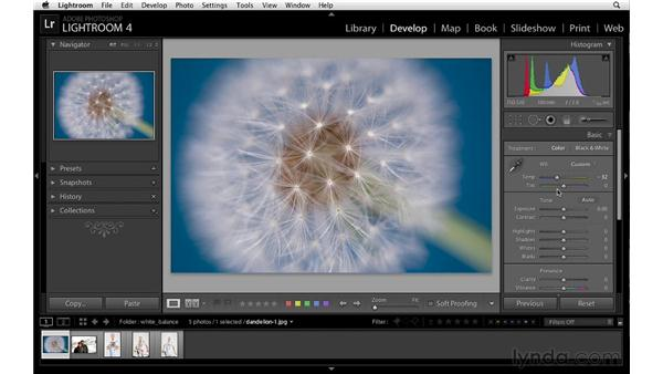 Creativity and white balance: Lightroom 4 Essentials: 02 Enhancing Photos with the Develop Module
