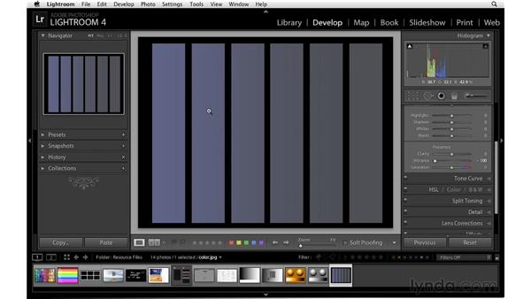 Understanding vibrance and saturation: Lightroom 4 Essentials: 02 Enhancing Photos with the Develop Module