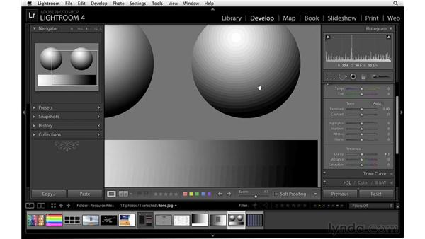 Understanding clarity: Lightroom 4 Essentials: 02 Enhancing Photos with the Develop Module
