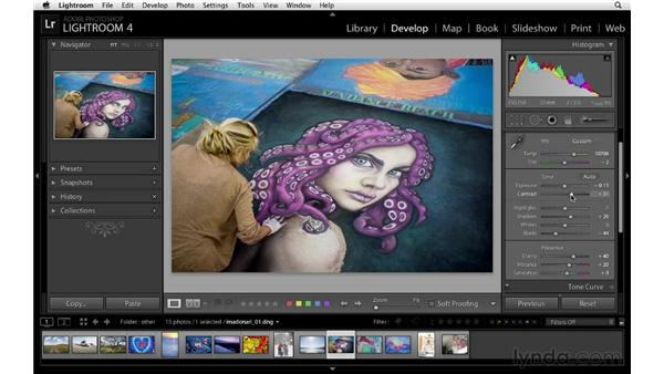 Basic panel workflow: Lightroom 4 Essentials: 02 Enhancing Photos with the Develop Module