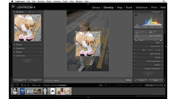 Synchronizing crop settings: Lightroom 4 Essentials: 02 Enhancing Photos with the Develop Module