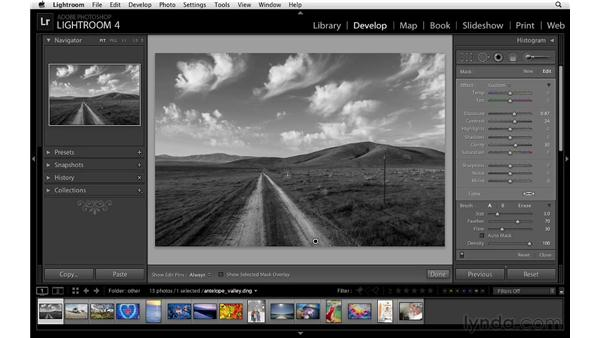 Burning and dodging a black-and-white image: Lightroom 4 Essentials: 02 Enhancing Photos with the Develop Module