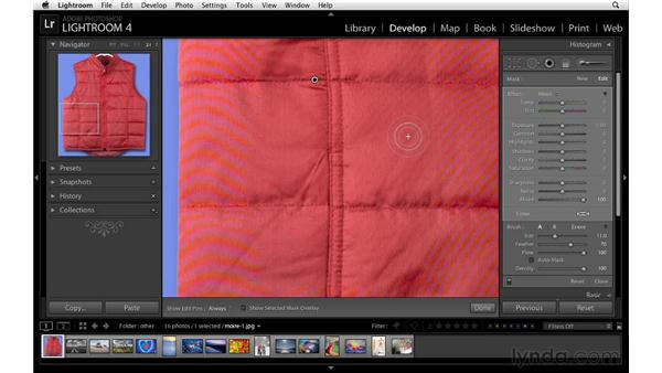 Minimizing moiré patterns: Lightroom 4 Essentials: 02 Enhancing Photos with the Develop Module