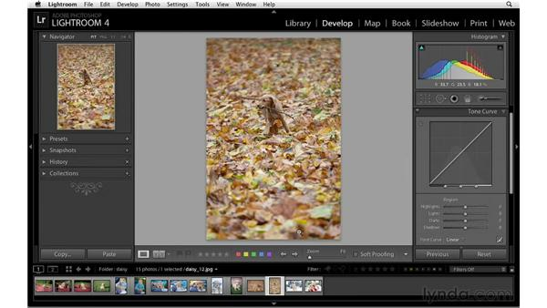 Using the tone curve to correct exposure: Lightroom 4 Essentials: 02 Enhancing Photos with the Develop Module
