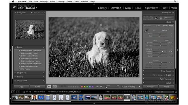 Using presets to convert to black and white: Lightroom 4 Essentials: 02 Enhancing Photos with the Develop Module