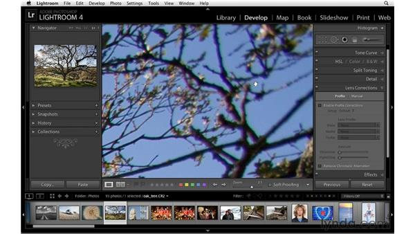 Removing chromatic aberration: Lightroom 4 Essentials: 02 Enhancing Photos with the Develop Module