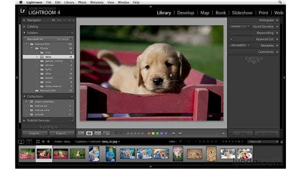 Adding a post-crop vignette: Lightroom 4 Essentials: 02 Enhancing Photos with the Develop Module