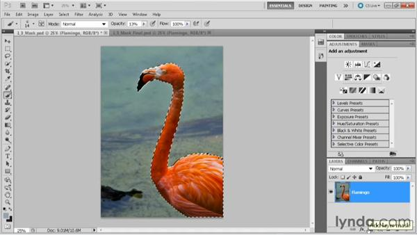Using selections to create masks: Practical Photoshop CS5 Selections