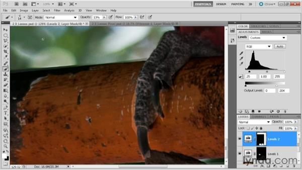Using selection lassos: Practical Photoshop CS5 Selections
