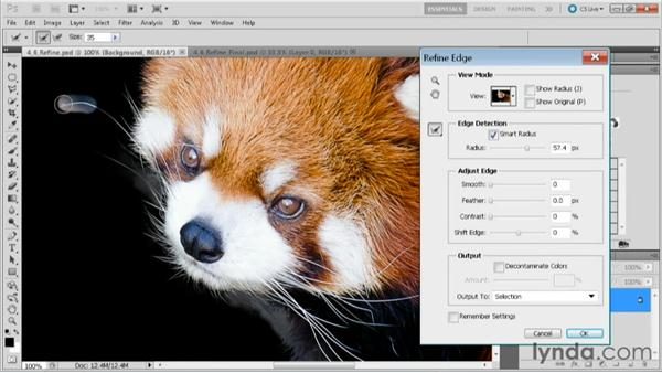 Using the Refine Edge command: Practical Photoshop CS5 Selections