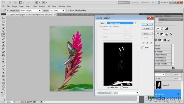 Using the Color Range command to select a tonal range: Practical Photoshop CS5 Selections