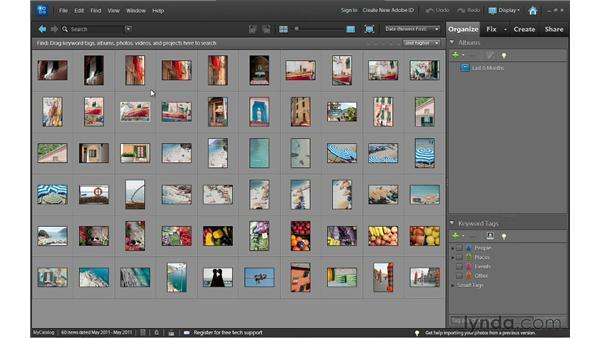 Getting around Elements: Photoshop Elements 10 Essential Training