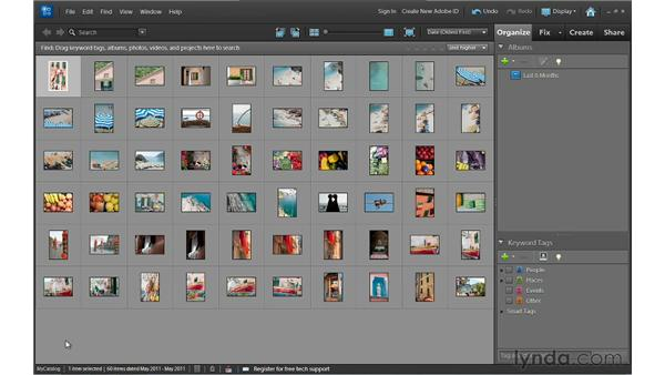 Working with Organizer catalogs: Photoshop Elements 10 Essential Training