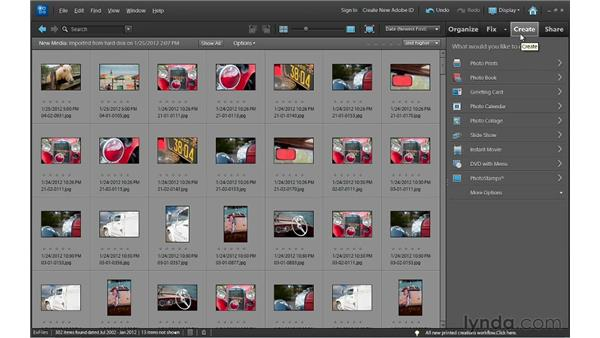 Touring the Organizer: Photoshop Elements 10 Essential Training