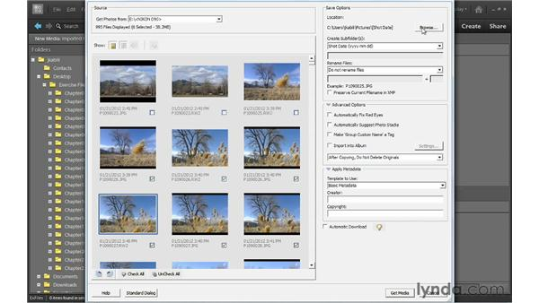 Importing photos from a camera: Photoshop Elements 10 Essential Training