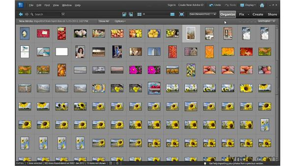 Working in Thumbnail view: Photoshop Elements 10 Essential Training