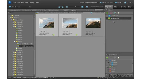Creating albums to organize photos: Photoshop Elements 10 Essential Training
