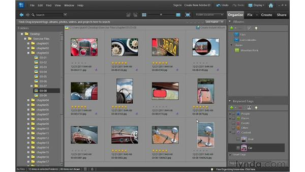 Creating smart albums: Photoshop Elements 10 Essential Training
