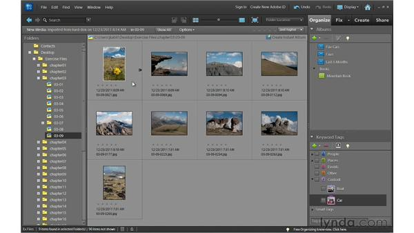 Stacking photos to reduce thumbnail clutter: Photoshop Elements 10 Essential Training
