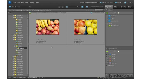 Moving photos: Photoshop Elements 10 Essential Training