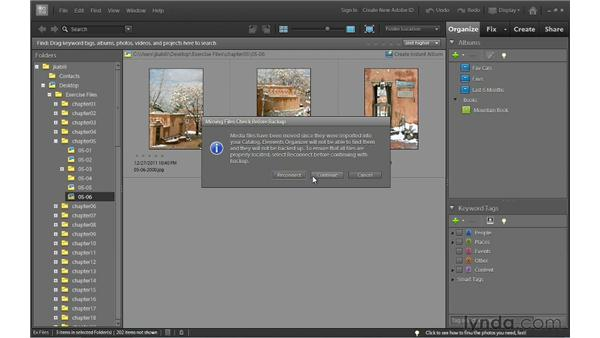 Backing up: Photoshop Elements 10 Essential Training