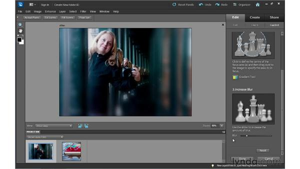 Simulating shallow depth of field: Photoshop Elements 10 Essential Training