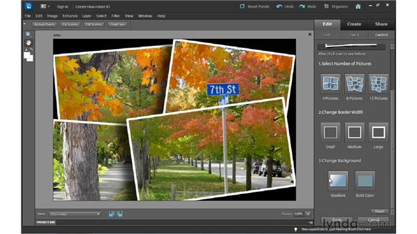 Creating a collage using Picture Stack: Photoshop Elements 10 Essential Training