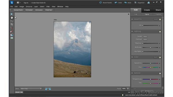 Quick improvements: introducing the Quick Edit workspace: Photoshop Elements 10 Essential Training