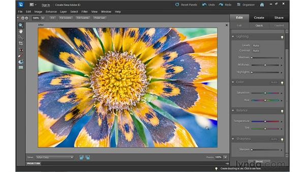 Sharpening images: Photoshop Elements 10 Essential Training