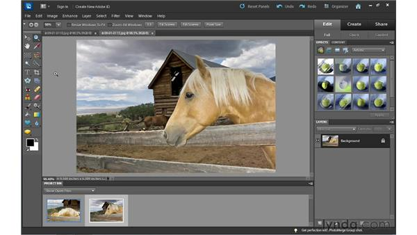 Full control: introducing the Full Edit workspace: Photoshop Elements 10 Essential Training